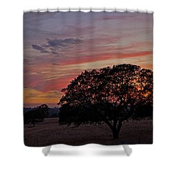 Campo Sunset Shower Curtain