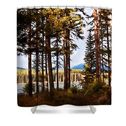 Campsite Dreams Shower Curtain