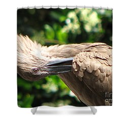 Shower Curtain featuring the photograph Can You Do This by Greg Patzer