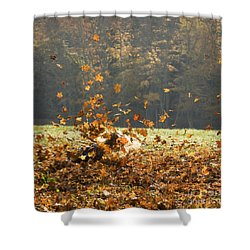 Shower Curtain featuring the photograph Can You See Me? by Carol Lynn Coronios