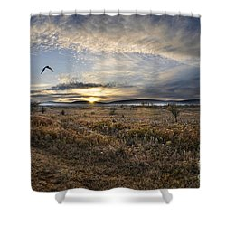 Canaan Valley In Morning Shower Curtain by Dan Friend