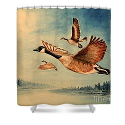 Canada Geese Shower Curtain by Bill Holkham