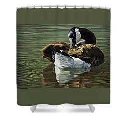 Canadian Goose Shower Curtain by Lucie Bilodeau