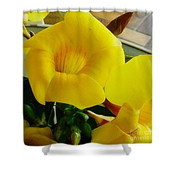 Canario Flower Shower Curtain