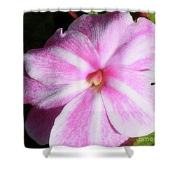 Shower Curtain featuring the photograph Candy Cane Impatiens by Barbara Griffin