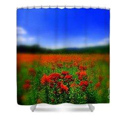 Candyland Shower Curtain by Neal Eslinger