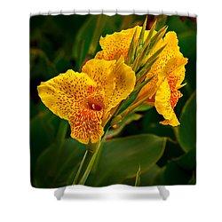 Canna Blossom Shower Curtain