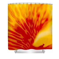 Shower Curtain featuring the photograph Canna Lilly by Michael Hoard