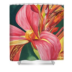 Canna Lily 2 Shower Curtain