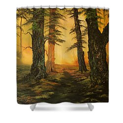 Cannock Chase Forest In Sunlight Shower Curtain by Jean Walker