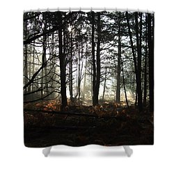 Shower Curtain featuring the photograph Cannock Chase by Jean Walker