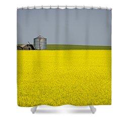 Canola Field Shower Curtain