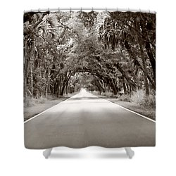 Canopy Of Trees Shower Curtain
