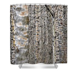 Can't See The Wood For The Trees Shower Curtain by Dee Cresswell