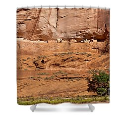 Canyon Dechelly Whitehouse Ruins Shower Curtain by Bob and Nadine Johnston