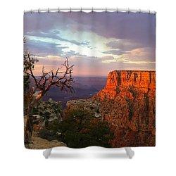 Canyon Rim Tree Shower Curtain by Heidi Smith