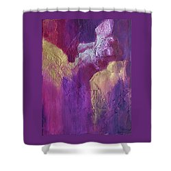Shower Curtain featuring the painting Canyonlands by Nancy Jolley