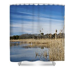 Cape May Marshes Shower Curtain by Jennifer Ancker