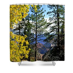 Cape Royal Grand Canyon Shower Curtain by Ed  Riche