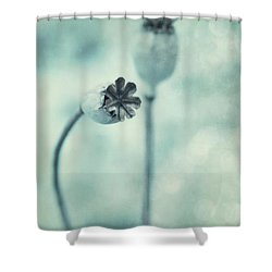 Capsules Series Shower Curtain by Priska Wettstein