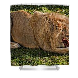 Captain Crunch Shower Curtain by Steve Harrington