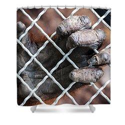 Shower Curtain featuring the photograph Captive Heart by Sennie Pierson