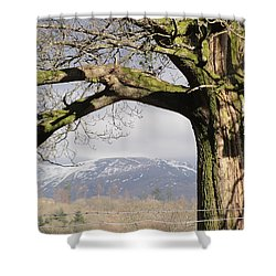Shower Curtain featuring the photograph Capture The Moment by Tiffany Erdman