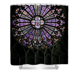 Carcassonne Rose Window Shower Curtain