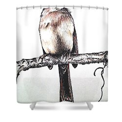 Cardinal Female Shower Curtain