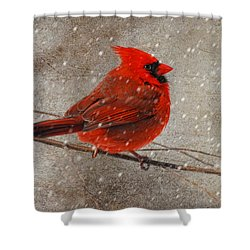 Cardinal In Snow Shower Curtain