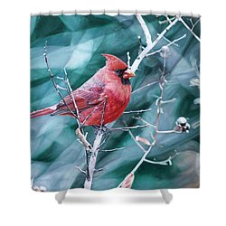 Shower Curtain featuring the painting Cardinal In Winter by Joshua Martin