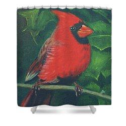 Cardinal Shower Curtain