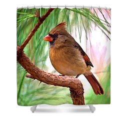 Cardinal Shower Curtain by Bob and Nadine Johnston