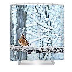 Cardinal No Mate To Keep Warm Shower Curtain by Randall Branham