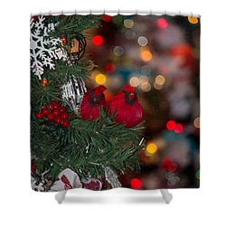 Shower Curtain featuring the photograph Cardinals At Christmas by Patricia Babbitt