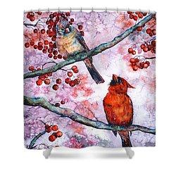 Cardinals  Shower Curtain by Zaira Dzhaubaeva