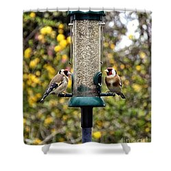 Carduelis Carduelis 'goldfinch' Shower Curtain