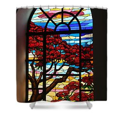 Shower Curtain featuring the photograph Caribbean Stained Glass  by The Art of Alice Terrill