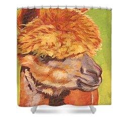 Carmencita Shower Curtain by Mary McInnis