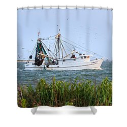 Carolina Girls Shrimp Boat Shower Curtain