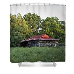 Carolina Horse Barn Shower Curtain