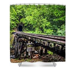 Carolina Railroad Trestle Shower Curtain by Debra and Dave Vanderlaan