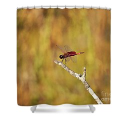 Carolina Saddlebags Dragonfly Shower Curtain