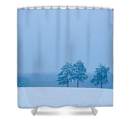 Carolina Snow Shower Curtain
