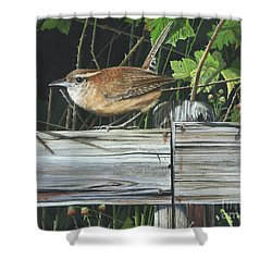 Shower Curtain featuring the painting Carolina Wren by Mike Brown