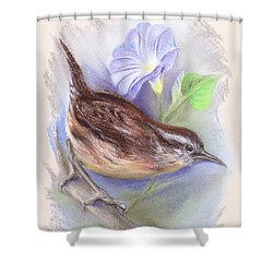 Carolina Wren With Morning Glory Shower Curtain
