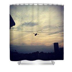 Carpenter Bees Abound On The Deck Shower Curtain