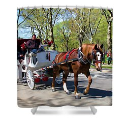 Shower Curtain featuring the photograph Carriage Ride In Central Park by Eleanor Abramson
