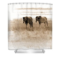 Carrot Island Ponies Shower Curtain by Sharon Seaward