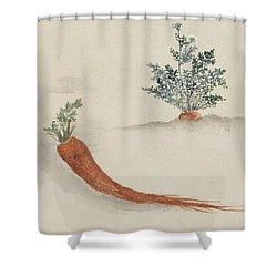 Carrots Shower Curtain by Aged Pixel